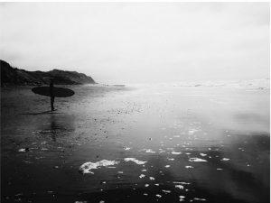 greysurf